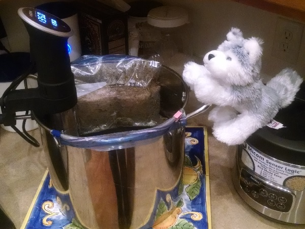 2016 03 04 Sous Vide Dog Food Standin