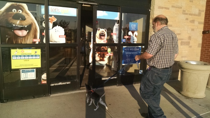June 27 Pet Store