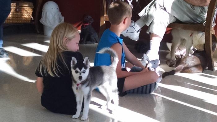 June 29 Puppy Class